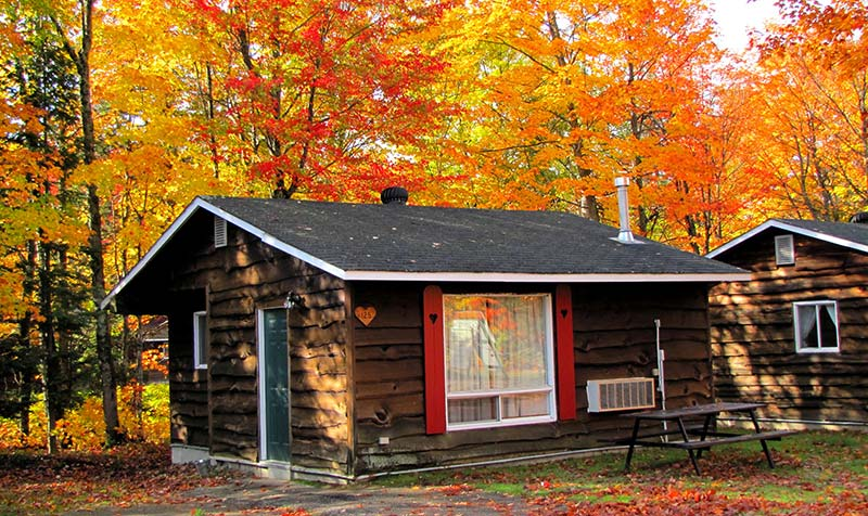 Cottages at glenview sault ste marie ontario canada for Air canada pet in cabin